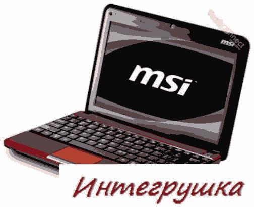 Элегантный нетбук MSI Wind U135DX