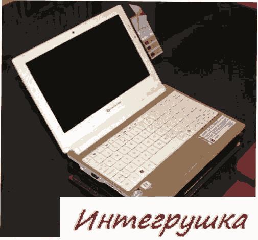 Стильный нетбук Packard Bell Dot S4